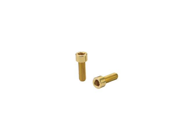 KCNC Torx Flaschenhalterschrauben gold
